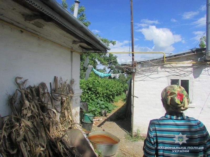 На Київщині бабуся насіяла величезну плантацію коноплі