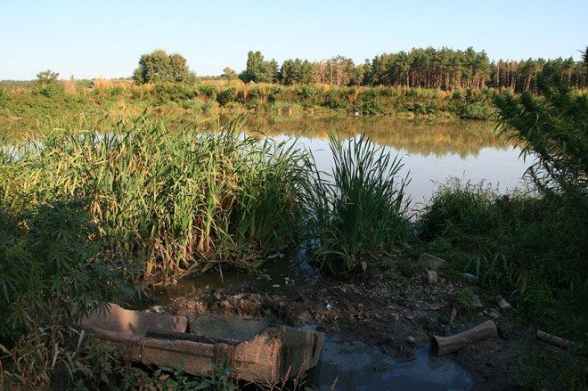 Бізнес на лайні: каналізаційні озера отруять Бориспільщину (фото)