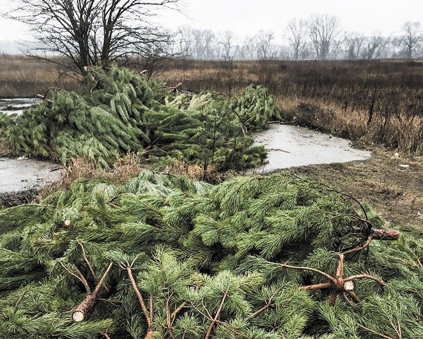 Бориспіль продовжує потопати у смітті