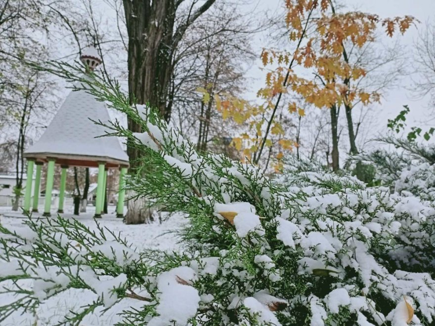 Зима в Борисполі (фото)