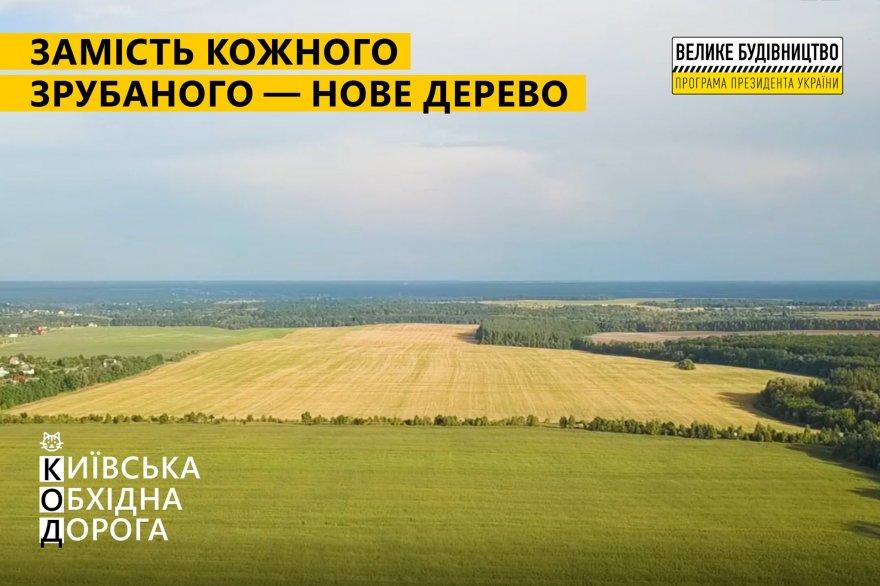 Замість кожного зрубаного — нове дерево: як відбуватиметься будівництво Київської обхідної дороги