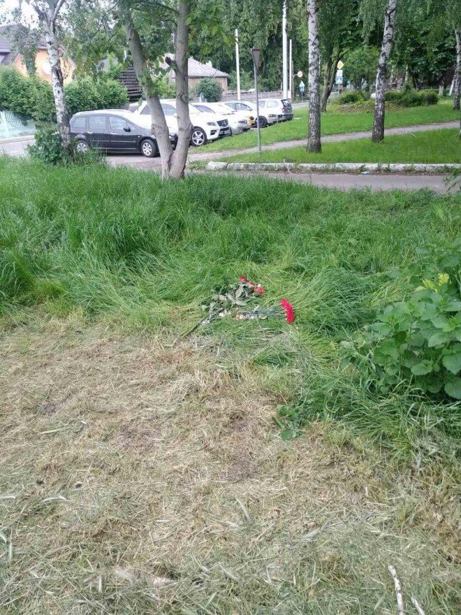 У Борисполі під час косіння трави загинув працівник Бориспільтепломережі