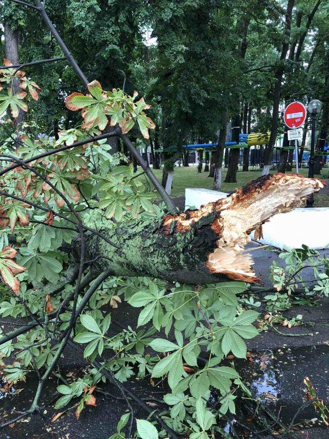 Наслідки негоди в Борисполі